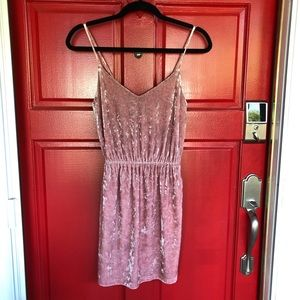 NWOT Beautiful Fall Pink Velvet Forever 21 Dress